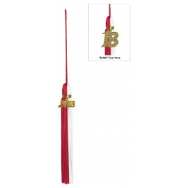Two Color Jumbo Tassel